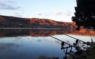 Top 10 Accesorii pescuit la somn de pe mal