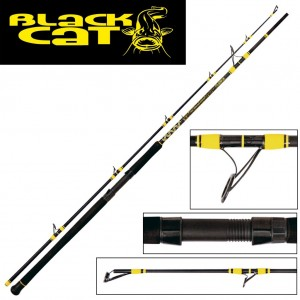 Lanseta Black Cat Passion Pro DX Boat 2.50m 400g